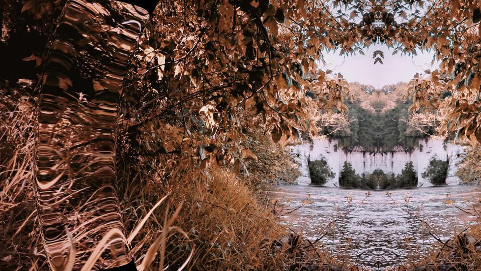 Divine Dordogne