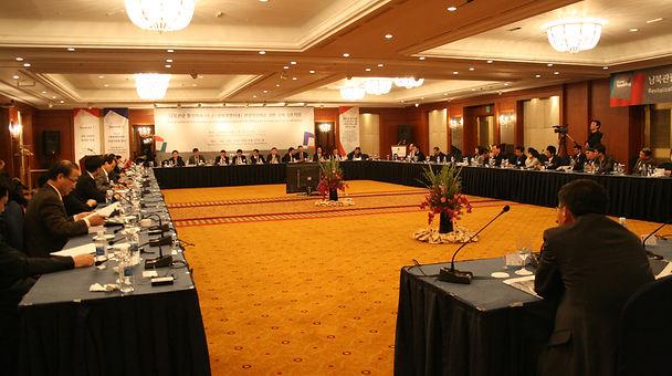 2008 남북관광 활성화와 PLZ(평화생명지대) 관광자원화를 위한 국제