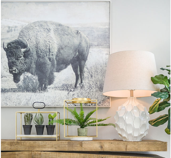 Bison 2018 Parade of Homes