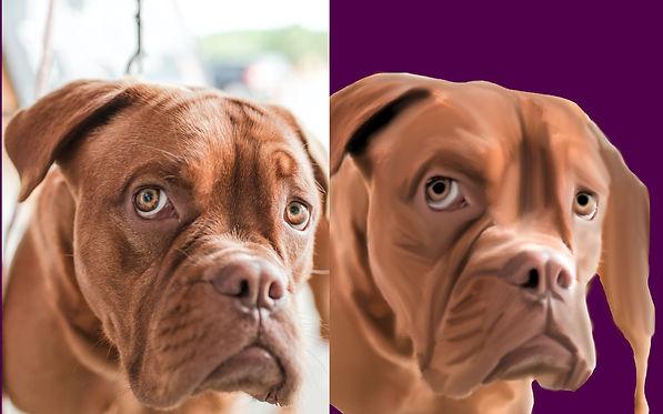 Bull dog smudge painting.jpg