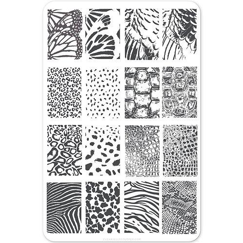 Texture Essentials - Wild Kingdom