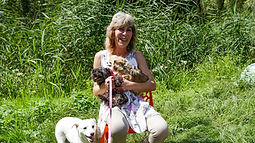 Christiane cherche des familles d'accueil pour les animaux