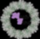 logo edelweiss MODIFIE detoure.png