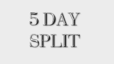 5 DAY WORKOUT SPLIT