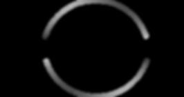 Logo FAC.png