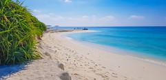 beach 8.jpeg