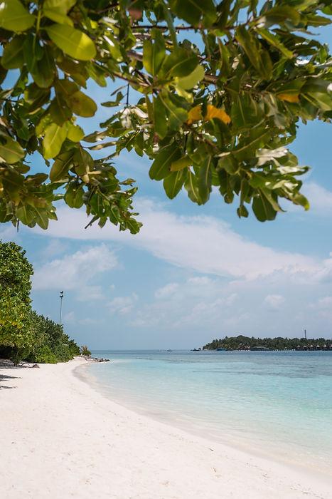 Maldives Bodhufoludhoo 1198.jpg