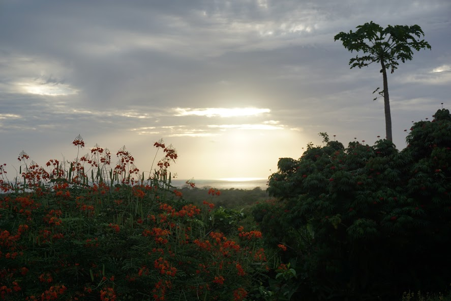 Guanacaste, Costa Rica.