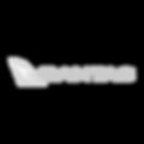 qantas-logo-preview-1_edited.png