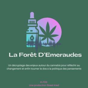 Les pouvoirs publics planchent sur une légalisation du cannabis en France - Ce qu'il faut comprendre
