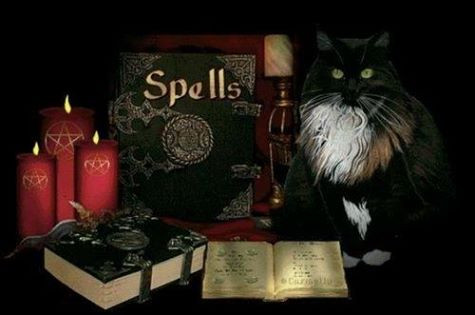 lost love spell caster in springfield,usa
