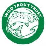 WTT-Logo-150x150.jpg