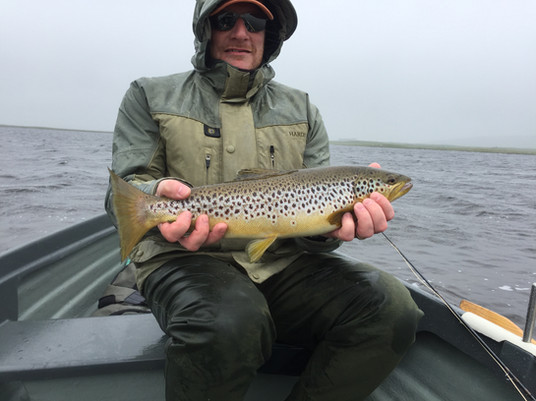 4.5lb Brown Trout