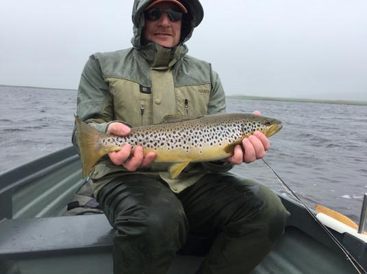 4.5lb Brown Trout