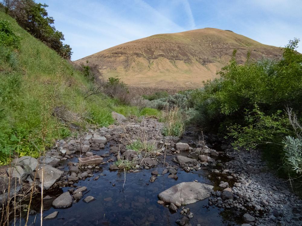 Photo of Jones Canyon, Sherman County, Oregon