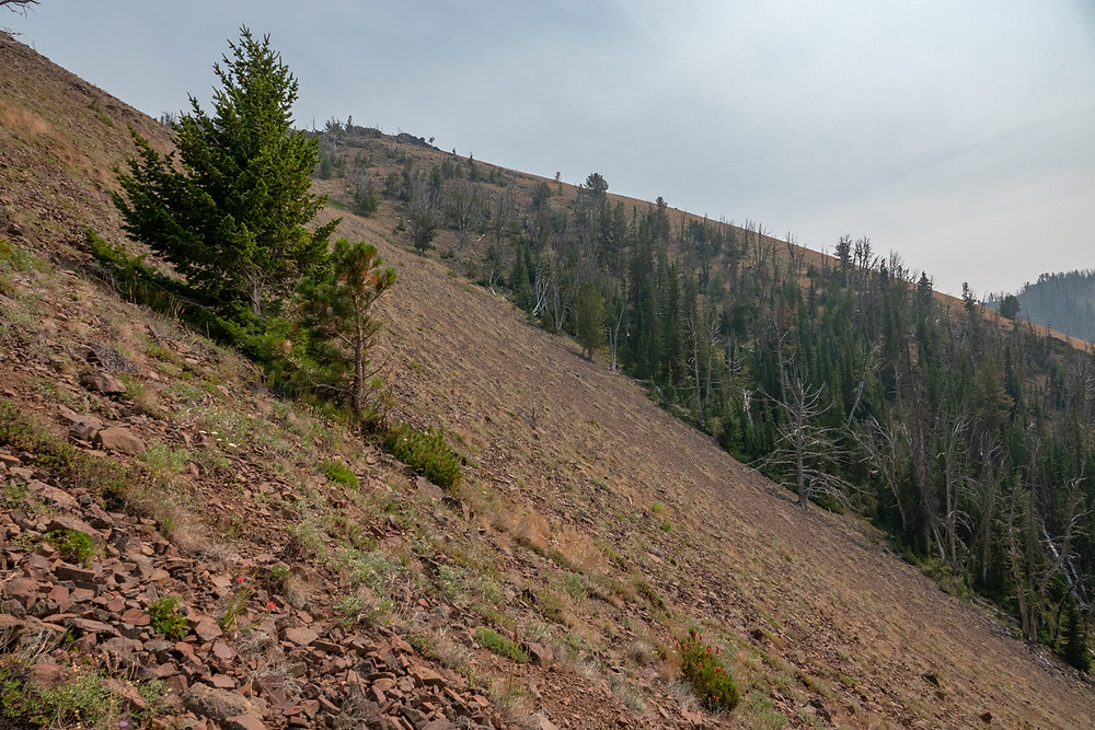 Photo of talus slope on Mt. Howard, Wallowa Mountains