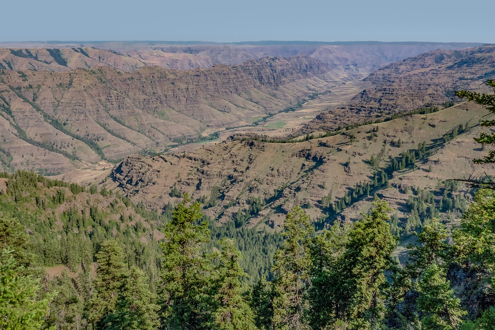 Photo of the Imnaha River canyon from Granny View
