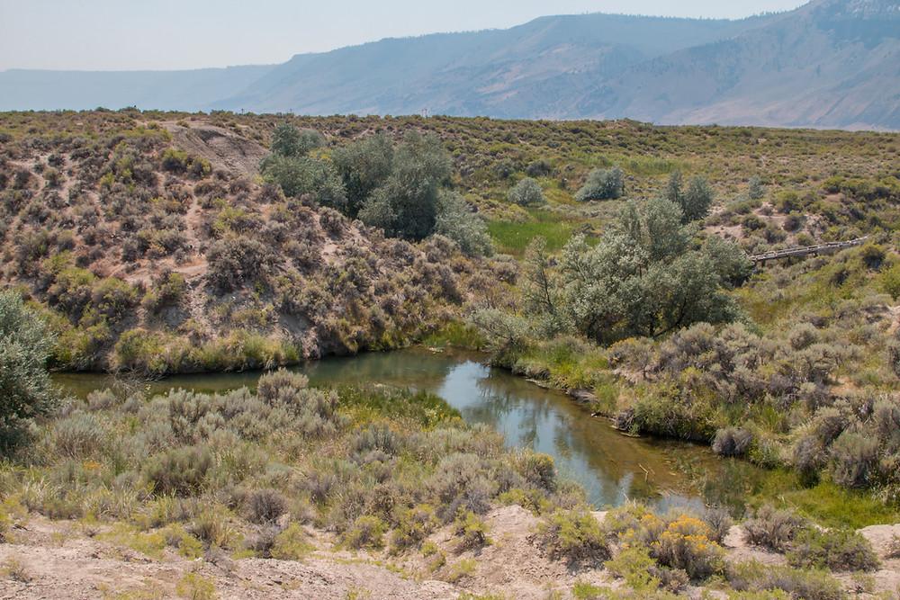 Photo of Ana River, near Summer Lake