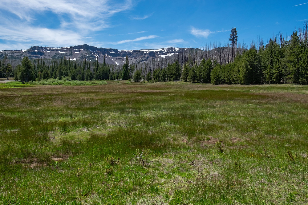 Image of Three Creeks Meadow, Deschutes County, Oregon