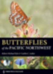 """Cover of """"Butterflis of the Pacific Northwest"""""""