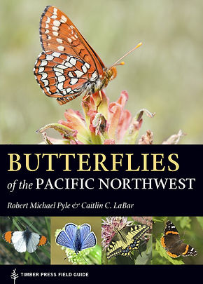 "Cover of ""Butterflis of the Pacific Northwest"""