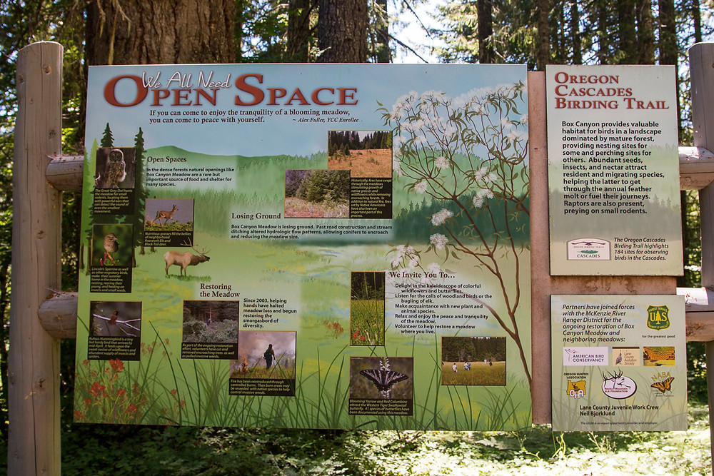 Photo of interpretive sign at Box Canyon Meadows