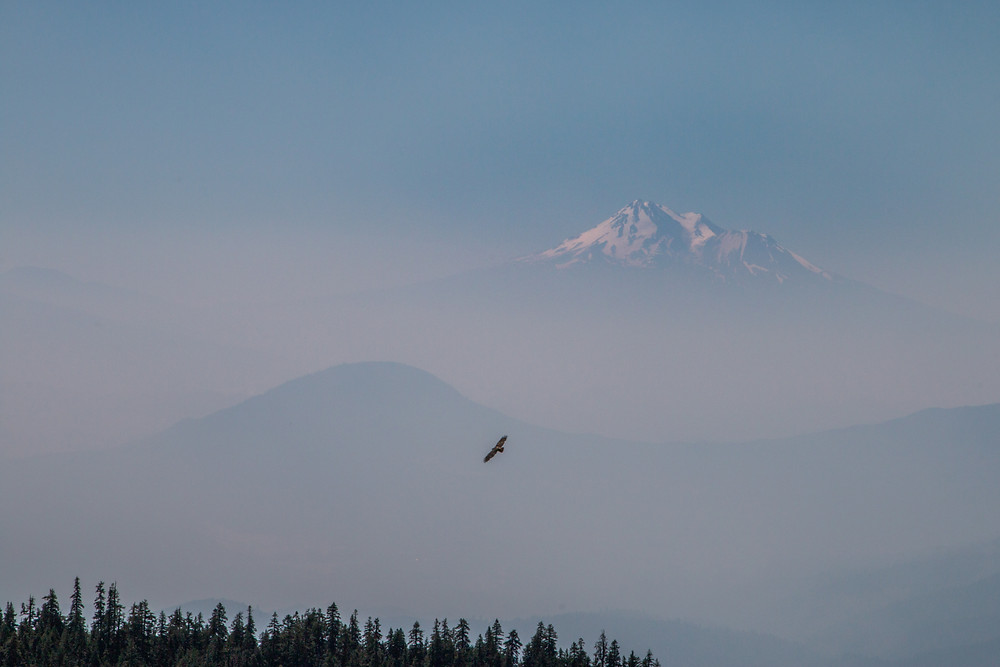 Photo of smoke from Klamathon Fire near Mt. Shasta