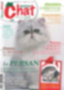 matou-chat n° 21