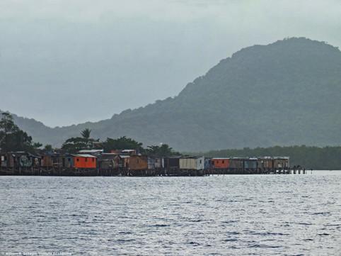 manguezal-palafitas09-william_schepis_instituto_ecofaxina.jpg.jpg