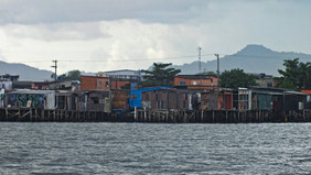 manguezal-palafitas010-william_schepis_instituto_ecofaxina.jpg.jpg