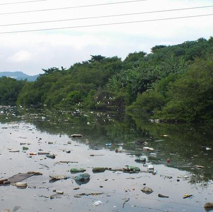 Estuário de Santos e São Vicente