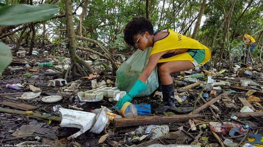 VII-Trote-Ecologico-EcoFaxina-William-R-Schepis-Instituto-EcoFaxina030.jpg