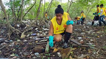 VII-Trote-Ecologico-EcoFaxina-William-R-Schepis-Instituto-EcoFaxina026.jpg