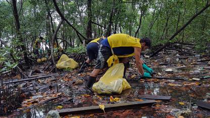 89ª Ação Voluntária EcoFaxina