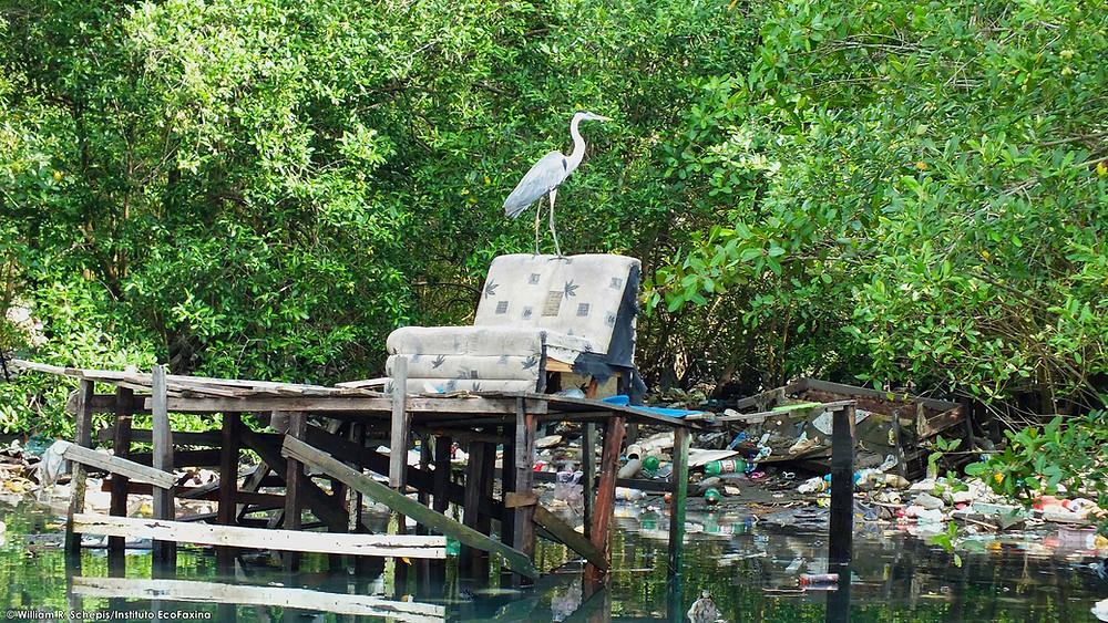 A poluição do estuário de Santos e São Vicente causa prejuízos à fauna, ao turismo, à pesca e à saúde pública.