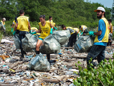 Instituto EcoFaxina e Greenpeace coletam 756 kg de lixo em manguezal de Santos