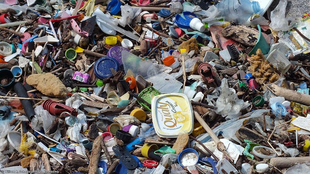 O prejuízo para a imagem das empresas que tem seus produtos poluindo os ecossistemas é grande.