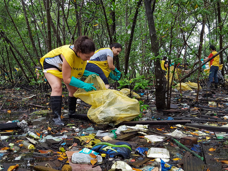 O domingo de carnaval terá 'bloco tradicional' limpando o manguezal