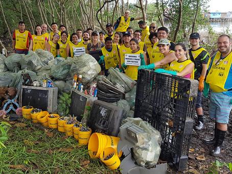 Voluntários retornam ao manguezal neste domingo (16/02)