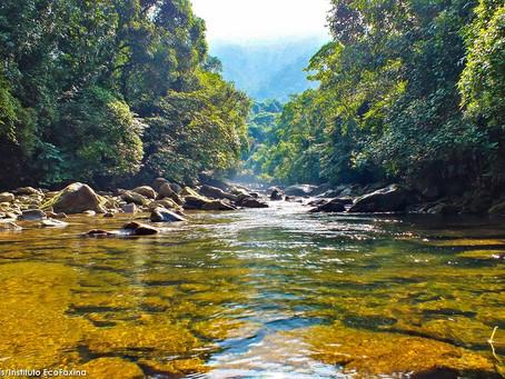 Cubatão recebe Ação Voluntária EcoFaxina neste domingo (19)