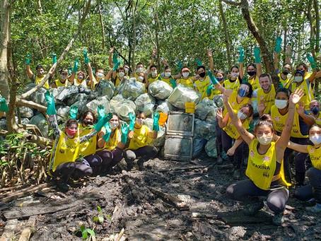 Voluntários retornam ao manguezal para a primeira ação do ano