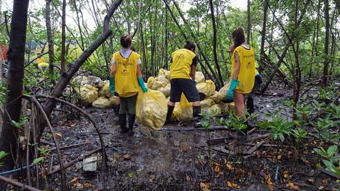 89ª Ação Voluntária EcoFaxina-050.jpg