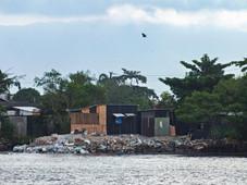 manguezal-palafitas06-william_schepis_instituto_ecofaxina.jpg.jpg
