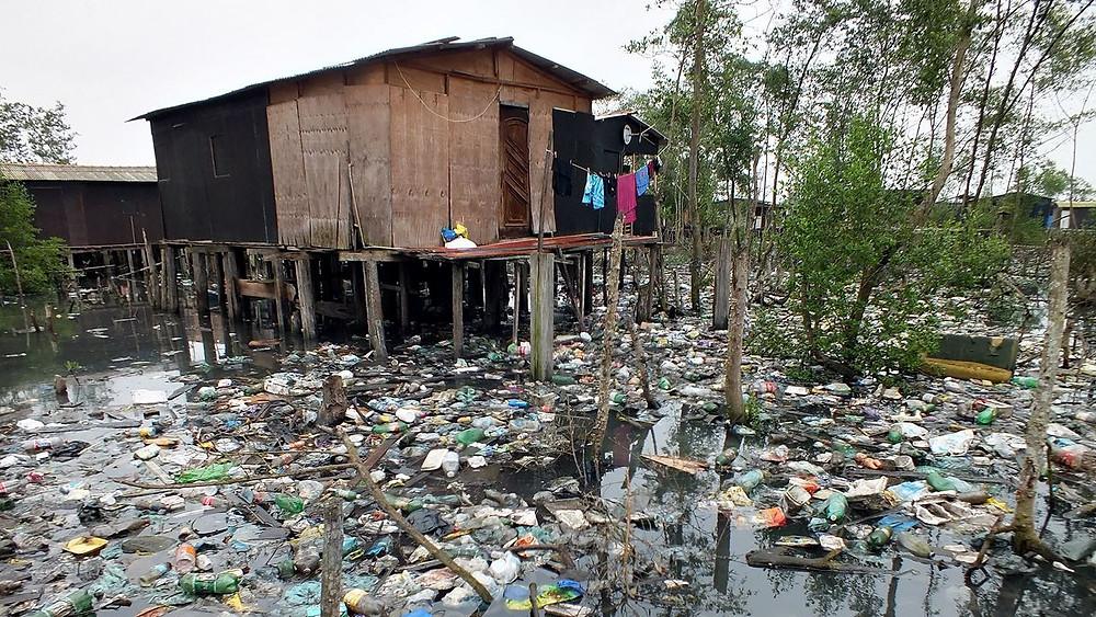 Palafitas no manguezal (área de preservação permanente) do estuário de Santos e São Vicente.
