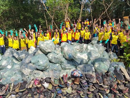 Coca-Cola FEMSA Brasil retira 1,4 tonelada de resíduosdo manguezal de Santos