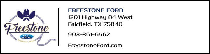 FREESTONE FORD