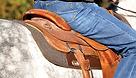 Saddle pad 2 (large).png