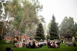 Wedding2-29