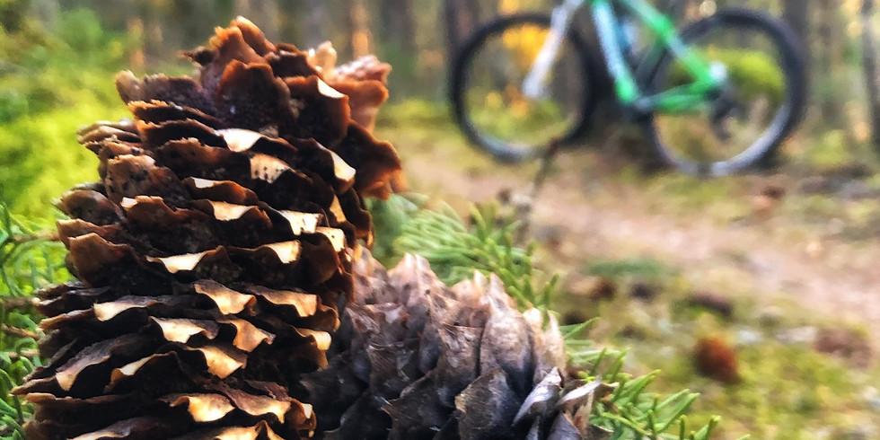 Aktiv cykel- eller vandringhelg på Snöå Bruk!