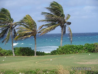 pictures-of-windy-day-5.jpg